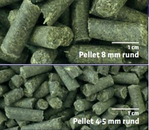 picture of Visitor Pellets